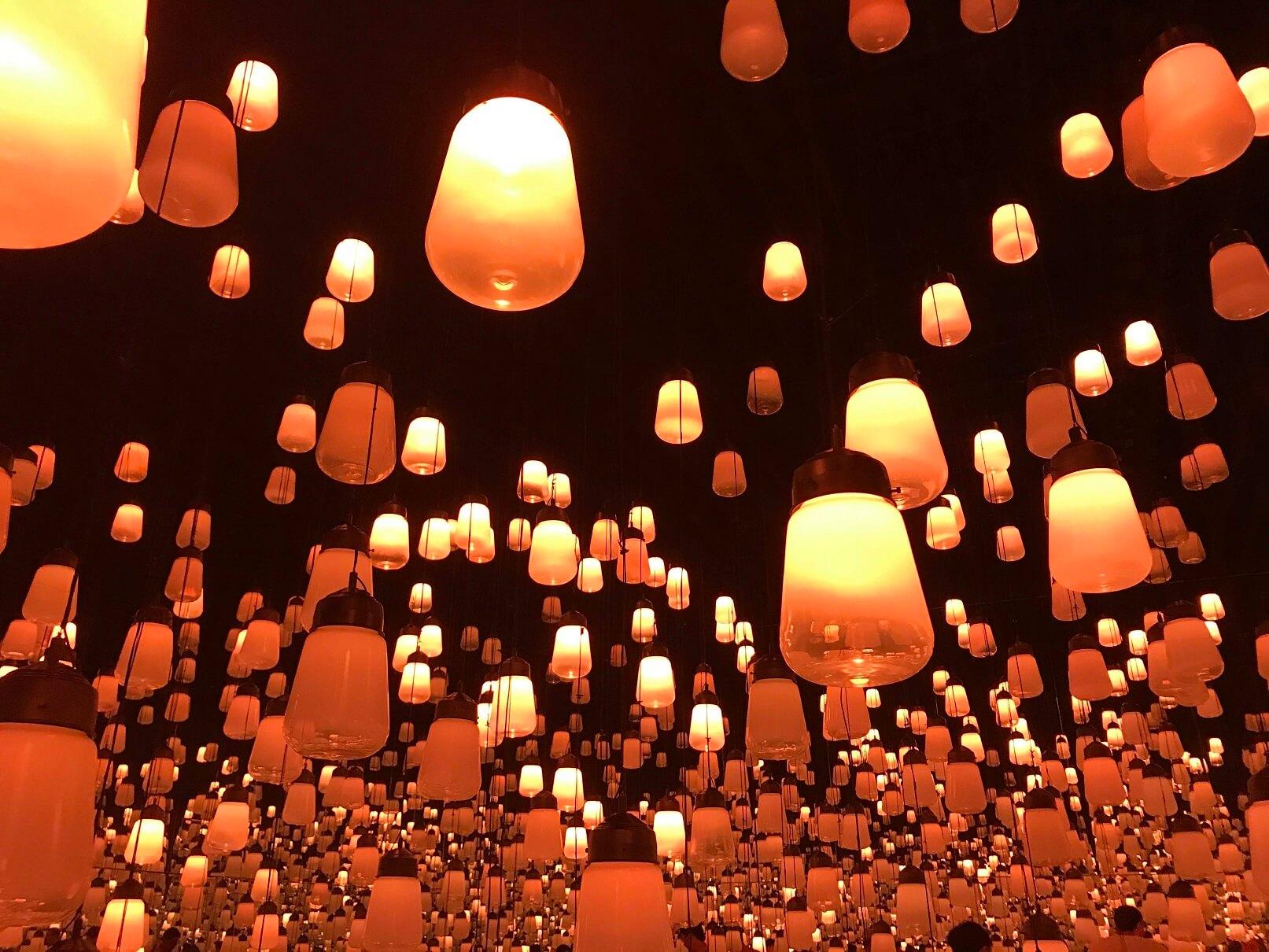 ランプの森1